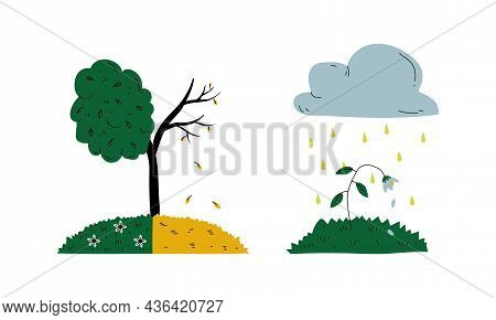 Dying Tree And Flower Because Of Toxic Fallout Vector Set