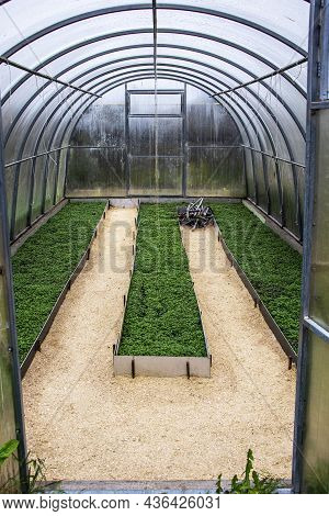 Greenhouse. Sowing Greenhouse Greenhouse Ridges. Greenhouse. Sowing Greenhouse Greenhouse Ridges.