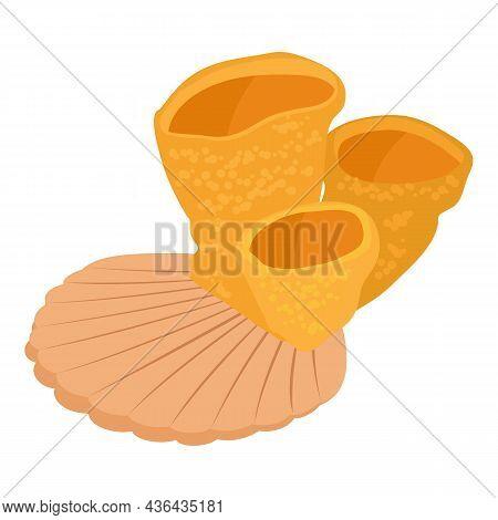 Sea World Icon Isometric Vector. Sponge Coral Porifera And Scallop Sea Shell. Hard Mushroom Coral, M
