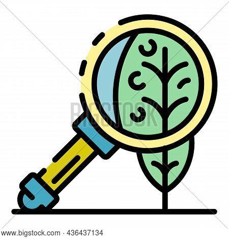 Leaf Under Magnify Glass Icon. Outline Leaf Under Magnify Glass Vector Icon Color Flat Isolated