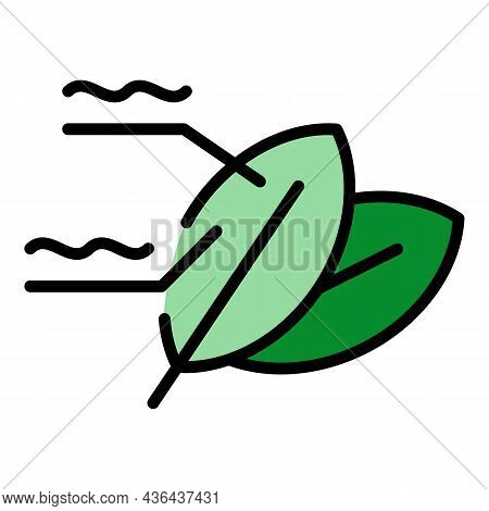 Solar Leaf Icon. Outline Solar Leaf Vector Icon Color Flat Isolated