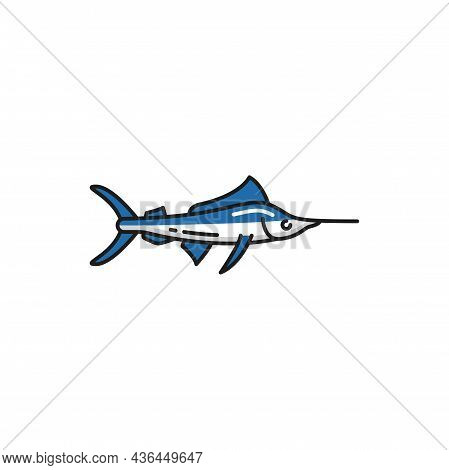 Narwhal Or Narwhale Medium-sized Toothed Whale Isolated Fish Native To Portugal Flat Cartoon Icon. V