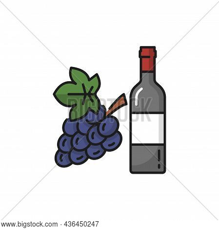 Elite Swiss Wine In Glass Bottle Winery Drink And Bunch Of Purple Grapes Isolated Flat Line Icon. Ve