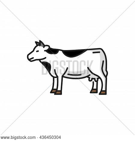 Cow Livestock Animal Isolated Spotted Beef Bovnie Isolated Flat Line Icon. Vector Beef Or Veal Meat