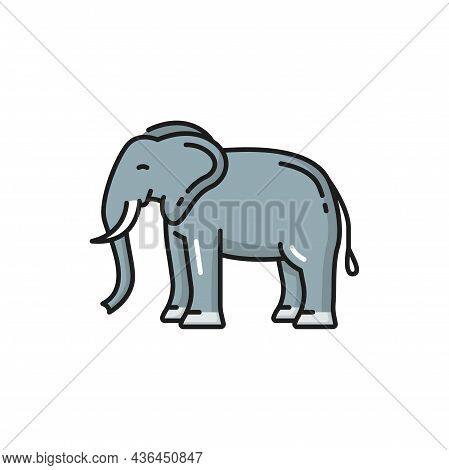 Thailand Animal White Elephant Isolated Color Line Icon. Vector African Bush Forest Asian Elephantid