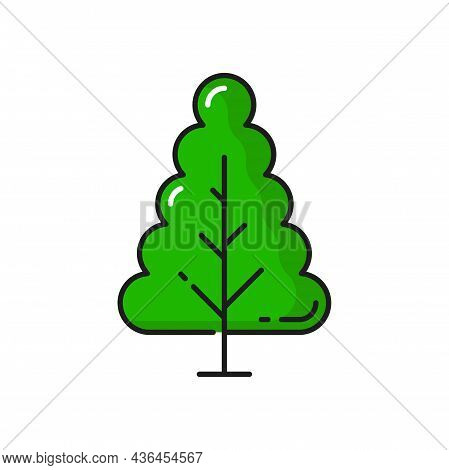 Green Tree Forest Plant Isolated Thin Line Icon. Vector Botanical Spring Or Summer Decorative Enviro