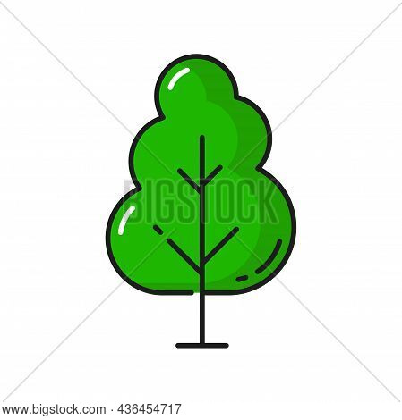 Forest Green Tree Isolated Park Plant Linear Icon. Vector Natural Botanical Growing Plant, Protect A