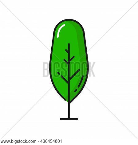 Cartoon Garden Tree Isolated Green Linear Park Or Forest Plant Outline Icon. Vector Green Landscape