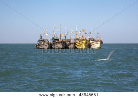 Row Fishing Boats Anchored Offshore
