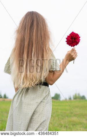 Young Blonde Long Haired Woman With Burgundy Colored Abloom Dahlia Flower In Hand Standing Back And