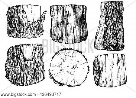 A Set Of Stumps In The Sketch Style. Black Outline Of Isolated Wooden Parts, Elements Hand-drawn Cro
