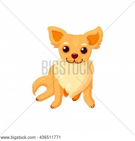 Sitting Chihuahua Pet. Purebreed Dog Companion Isolated In White Background. Vector Illustration In