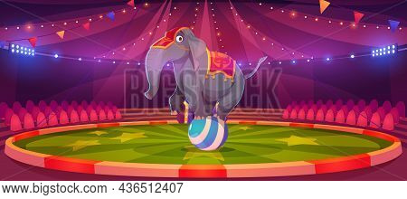 Circus Elephant Stand On Ball At Big Top Tent Arena With Garlands. Carnival Entertainment With Wild