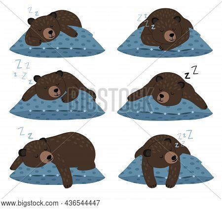 Lazy Bear Sleep. Sleeping Cute Teddy Character Poses On Pillow, Quiet Winter Rest, Fat Animal Lazine