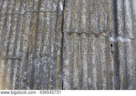 Roof Of A Country House, Covered With Gray Slate, Close-up. Old Roof Covered With Slate. Green Moss