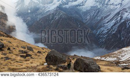 Annapurna Region, Nepal - November 10, 2018: Porters Walk The Track Abc To Machhapuchhre Base Camp,