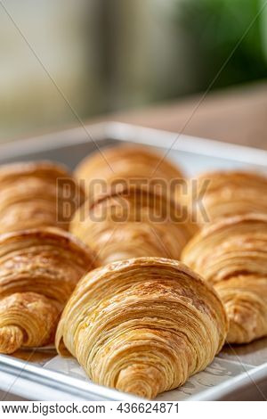 Delicious Of Freshly Baked Plain Croissant. Homemade French Butter Croissants.