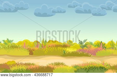 The Road Through The Meadow. Autumn Grassy Glade. Grass Close Up. Mainly Cloudy. Uncut Lawn. Trail.