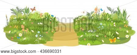 Rural Road Obliquely To Green Glade. Summer Flower Meadow. Trail. Juicy Grass Close Up. Grassland. C