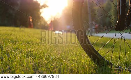 The Front Wheel Of The Bike In The Park On The Grass On A Sunny Day, Close-up.