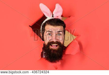 Easter Day. Happy Bearded Man In Bunny Ears. Bunny Rabbit Man.