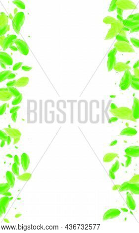 Greenish Greenery Background White Vector. Leaves Creative Card. Environment Design. Green Selective