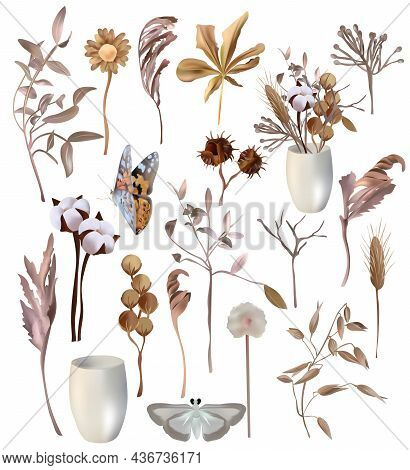 Set Of Decoration Leaves. Cotton, Dry Herbs, Decoration Flower, Tree Branch Butterfly. Vector Icons