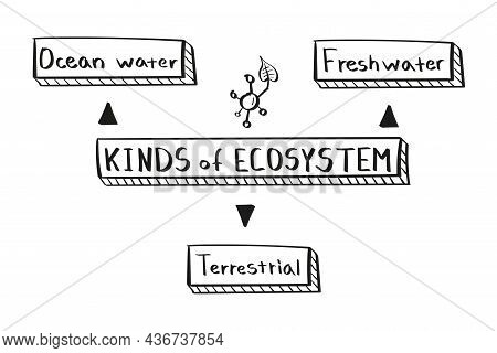 Concept Kinds Of Ecosystem Mind Map In Handwritten Style.