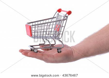 Hand Holding Shopping Trolly