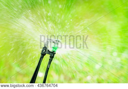 Closeup Sprinkler Watering Grass On Blur Green Background. Sprinkler With Automatic System. Garden I