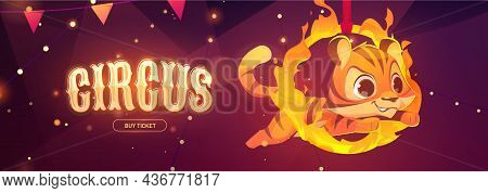 Circus Poster With Tiger Jumping Through Fire Ring. Vector Flyer Of Carnival Performance With Animal