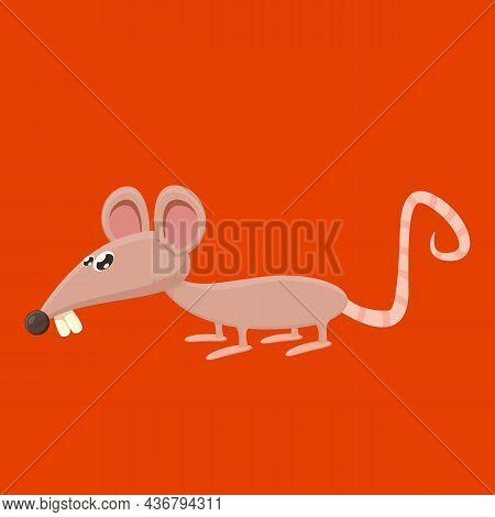 Vector Cartoon Funny Mouse Animal Isolated On Red Background. Little Cute Smiling Mice Character