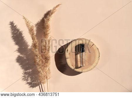 Glass Perfume Sample With Transparent Liquid On A Wooden Tray Lying On A Beige Background With Pampa