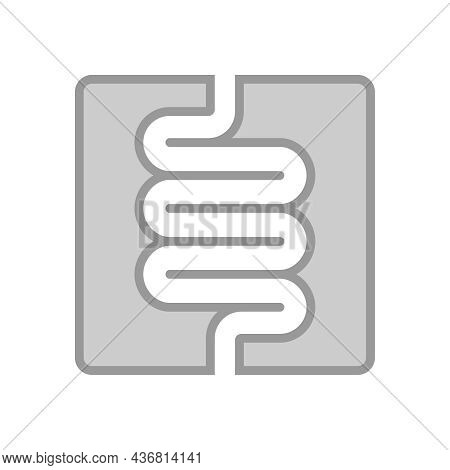 Intestine Human Organ Icon. Intestine Graphic Sign Isolated On White Background. Digestive System Sy