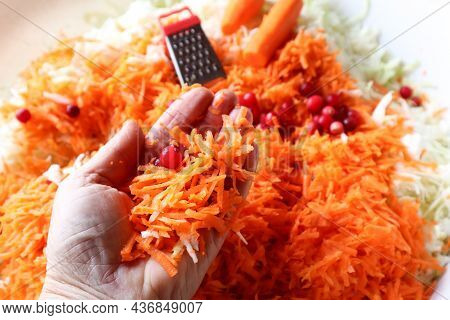 The Concept Of Cooking Cabbage For The Winter. Carrots And Cranberries In A Woman's Hand On The Back