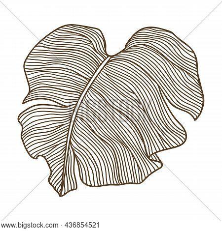 Illustration Of Stylized Palm Leaf. Decorative Image Of Tropical Foliage And Plant.