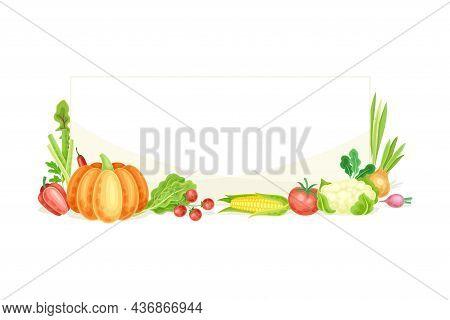 Bright Rectangular Vegetable Frame With Ripe And Fresh Garden Cultivar Closeup Vector Illustration