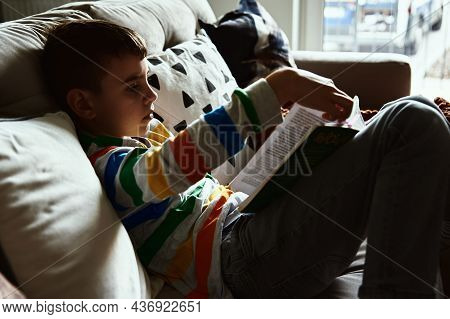 Young Boy Reading Book On The Sofa At Home