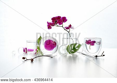 Reflections, Floral Elements Distorted In Water. Natural Laboratory. Abstract Floral Arrangement Wit