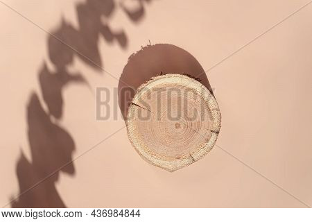 Woodcut Lying On A Trendy Beige Background With Shadows Of Dry Flowers. A Wooden Platform With Shade