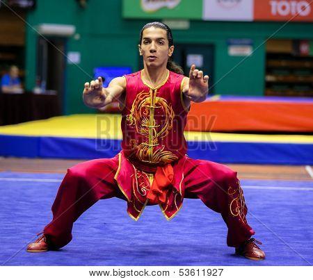 KUALA LUMPUR - NOV 03: Gallo Arturo of Italy shows his fighting style in the 'nan quan compulsory' event at the 12th World Wushu Championship on November 03, 2013 in Kuala Lumpur, Malaysia.