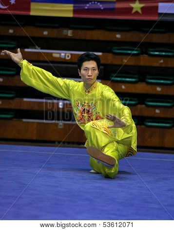 KUALA LUMPUR - NOV 03: Chai Yunlong of China shows his fighting style in the 'Taiji quan' event at the 12th World Wushu Championship on November 03, 2013 in Kuala Lumpur, Malaysia.