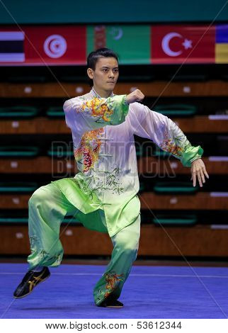 KUALA LUMPUR - NOV 03: Lee Yang of Malaysia performs his taiji quan martial arts moves in the 'taiji quan' event at the 12th World Wushu Championship on November 03, 2013 in Kuala Lumpur, Malaysia.
