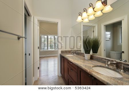 Jack and jill bathroom in new construction home poster
