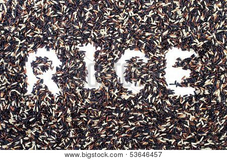 Blace Rice And Broen Rice Background With Rice Word