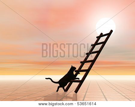 Black silhouette of cat walking towards a ladder leading to the sun poster