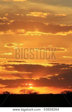 Sunset Background - African Beauty and Wonder
