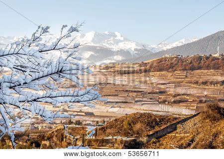 Panorama of Sion vineyards in Switzerland