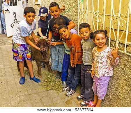 FES, MAROCCO - October 15 2013 : Kids with their sheep on Eid al-Adha. The festival is celebrated by sacrificing a sheep or other animal and distributing the meat to relatives, friends, and the poor.