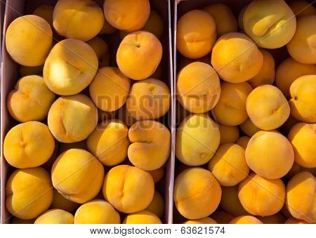 Calanda peaches rainfed from Teruel Spain in baskets at market